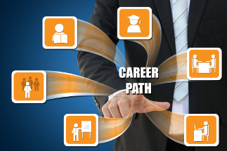 smaller images showing a variety of routes to a career